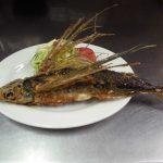屋久島で食べたい海の幸!魚好きにはたまらない!食べずしては帰れないグルメ