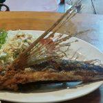 飛び魚~屋久島で日本一の飛び魚を食べる~
